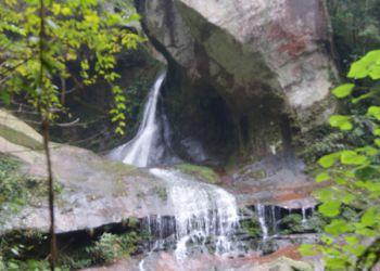 四面山原始森林中的凤尾瀑